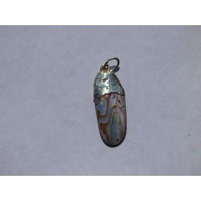 Abalone Pendant - ref. a15