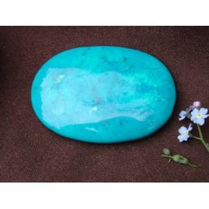 Blue Howlite Palmstone